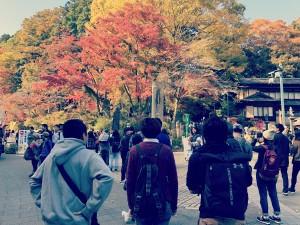 11月 KATACHI 高尾山登り