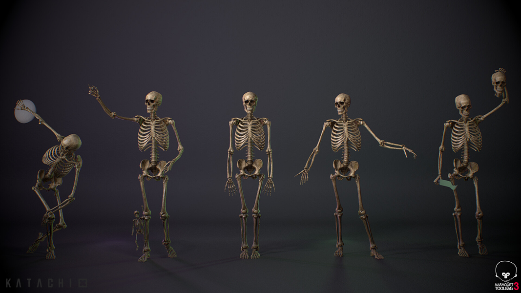 Skeleton full body_02